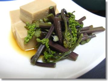 ワラビと高野豆腐