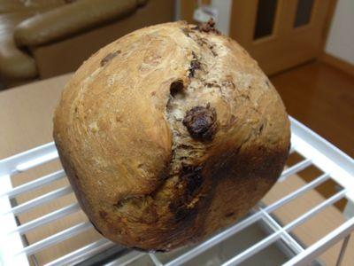 GOPAN( ゴパン )でチョコパン、チョコレート ごはんパン!