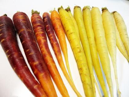 カラー人参、彩添えるクセのないミニ野菜